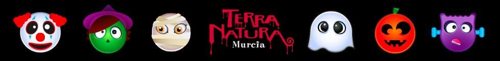 megabanner terranatura halloween