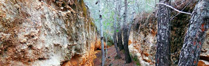 Sendero Las Trincheras del Valle Perdido